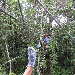 Eco Adventure - great fun.