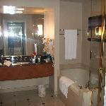 Vanity/Bath/Shower