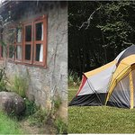 Forest Cabin and camping tents