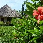 Le jardin de l'hotel, magnifique...