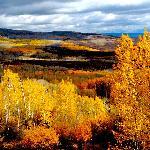 Fall from Land O Lakes - Photo Steve Huntley