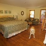 Pet-friendly king w/ sleep sofa & kitchenette