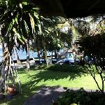 ocean view bungalow