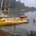 At the lake side