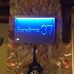 Sandima 37