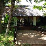 Cheetah Inn entrance