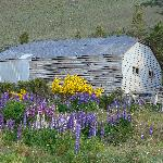 An old barn in the Estancia