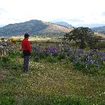The backyard of Tres Pasos