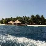 Die Insel vom Schnellboot aus