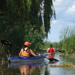 Guided Kayak Tours on the Grand River