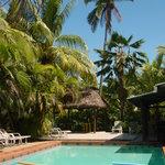 Our salt water pool