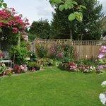 Our garden June 2011