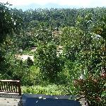 Dewi Utari pool view