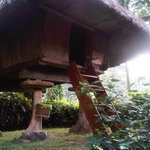 Native Ifugao Hut