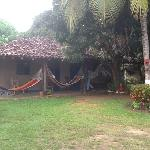 Tyical house