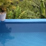 Top Suite Pool