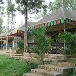 Photo of N.P.S Lake View Resort