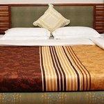 Photo of Maharaja Residency Hotel