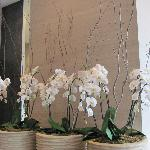 flowers in the lobby