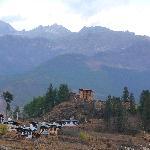 I resti dello dzong di Drukgyel
