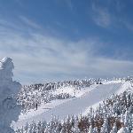 標高2000mの樹氷と奥志賀第四ゲレンデ