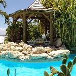 carbet piscine