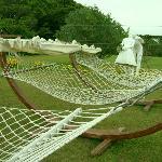 The hammocks.