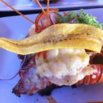 Photo of Luna Maya Steak & Seafood Restaurant