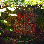 johnny cool's imprint