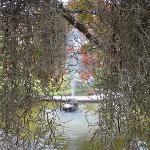 moss...waterfall/pond area