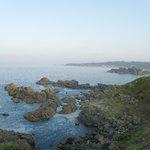 葦毛崎展望台から種差海岸方面を望む