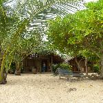 Photo de Mangrove Garden Beach Cabanas