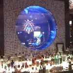 The Atlantic Grille and Jellies Bar
