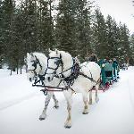 Winter Sleigh Ride Dinner