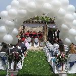 Weddings at Phoenicia