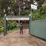 مدخل forest villa