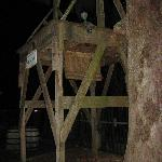 Foto de Paranormal Investigations Inside The Old Jail