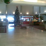 lobby with a beautiful X-mas tree