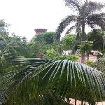 Habitación con vista al jardín