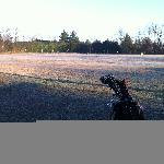 Campo pratica ghiacciato del golf hotel il 26.12.2011