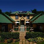 Welcome to Villa della Rosa B&B!
