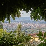 A natural frame for an amazing view of Florence