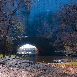 The Bridge In Central Park - Romantic Edit Dec 8th 2011