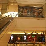Riding the escalators