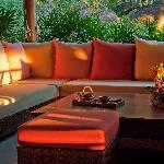 Alchemy Tea Lounge