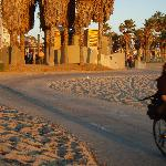 Sunset bike riding along the beachfront in Venice Beach/Santa Monica