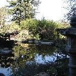Japanese park, very close