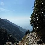 The trail from McLeod Ganj