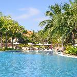 Pandanus swimming pool