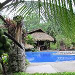 Een heerlijk zwembad met zwembadbar en  jacuzzi